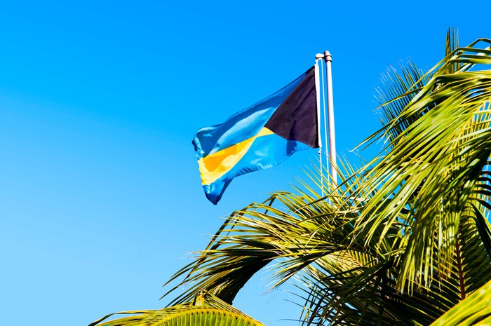 The flag of the Bahamas flutters above palm trees.