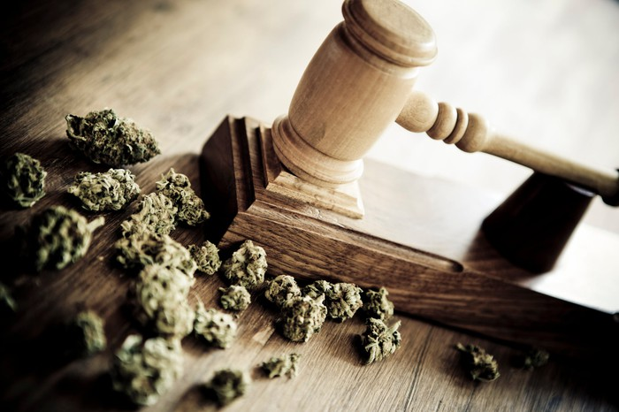 A gavel next to a handful of dried cannabis buds.