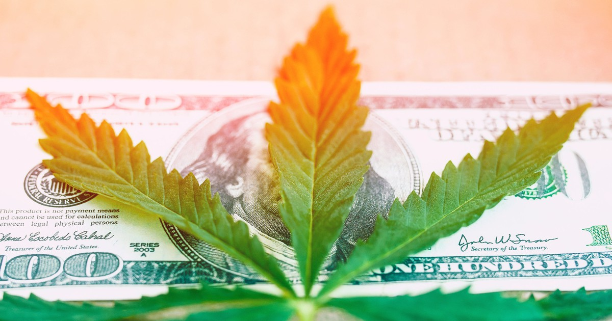 3 Top Cannabis Stocks to Buy Today