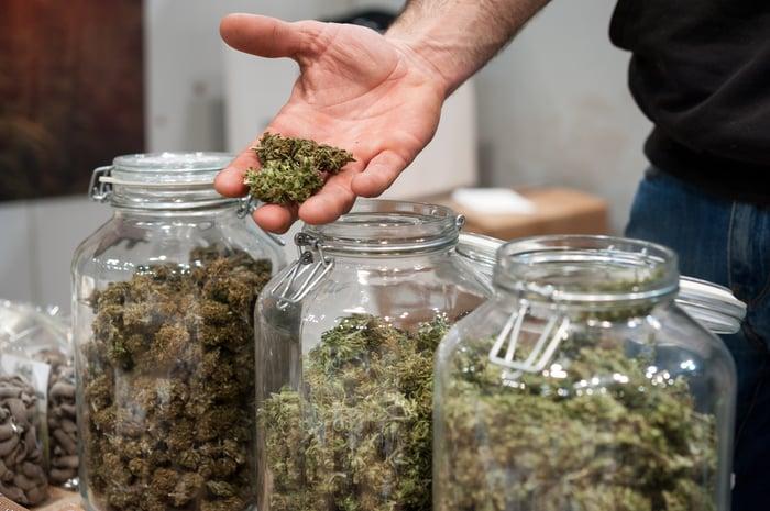 Jars of cannabis.