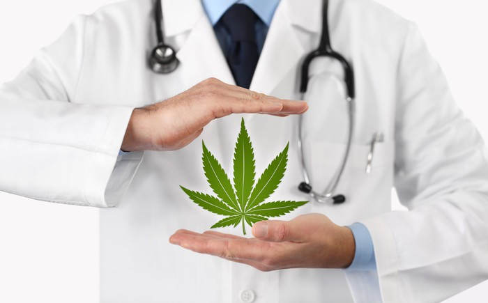A physician with a stethoscope around his neck holding a cannabis leaf upright between his hands.