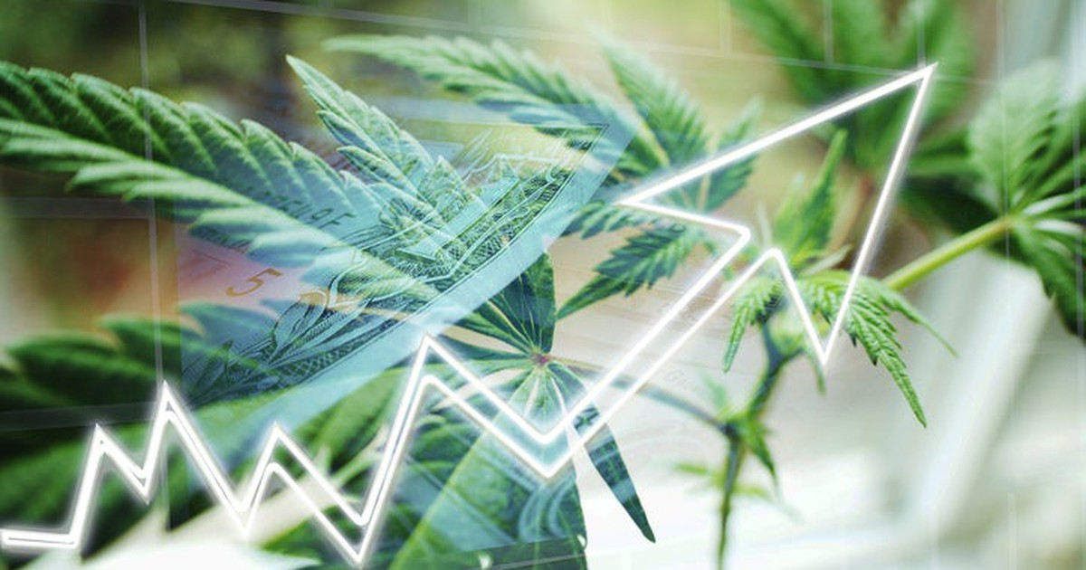 2 Cannabis Stocks That Have Turned $1,000 Into More Than $2,000 So Far in 2019 -- Are They Buys?