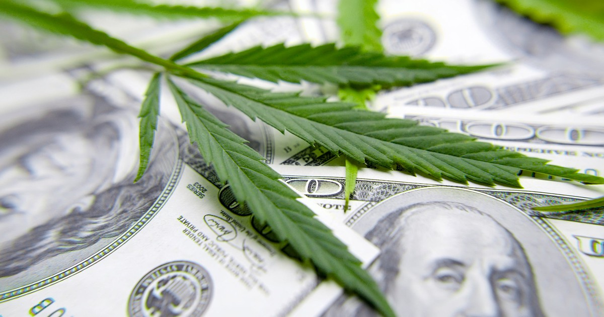 4 Top Cannabis Stocks to Buy in Q4