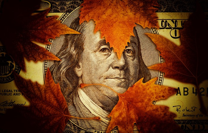 Leaves on top of a hundred-dollar bill.