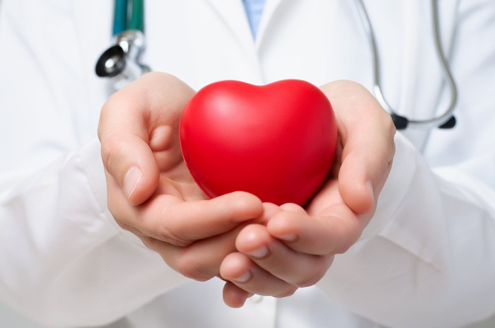 Doctor holding a heart shaped object.