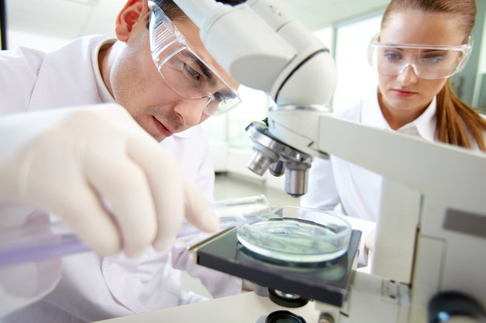 Two people in lab coats and safety goggles looking at a petri dish under a microscope.