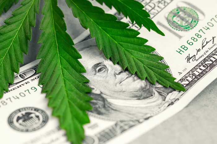 Marijuana leaf atop a 100 dollar bill.