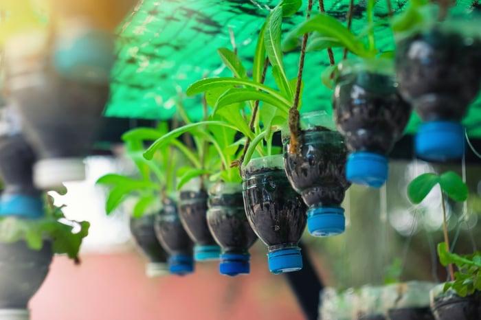 Plants in pots made from plastic soda bottles hang in a nursery.