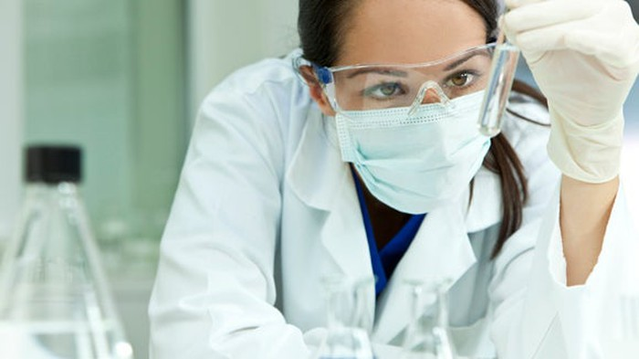 Scientist looks at beaker