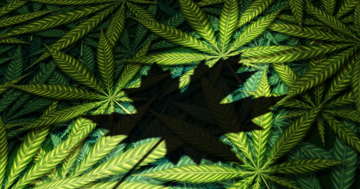 3 Things You Should Expect With Canada's Cannabis 2.0 Recreational Marijuana Market