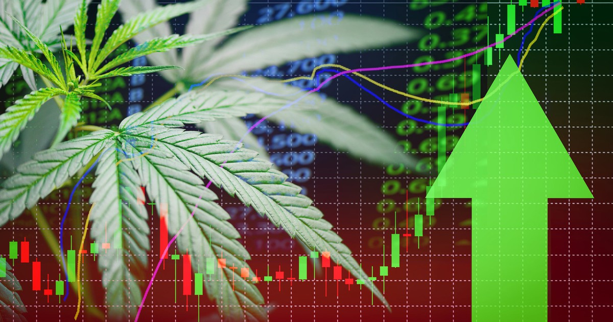 3 Reasons Aurora Cannabis Could Soar Before the End of 2019