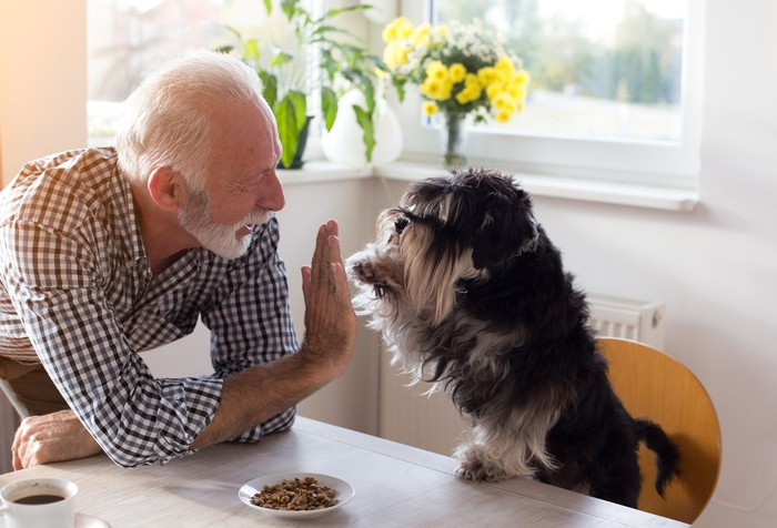 An elderly man high-fiving a dog at the kitchen table.