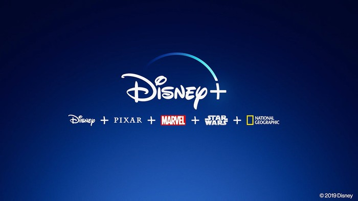 A Disney+ logo on top of logos for Disney, Pixar, Marvel, Star Wars, and National Geographic.