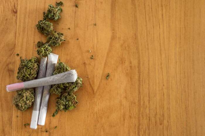 Three rolled joints lying among cannabis buds.