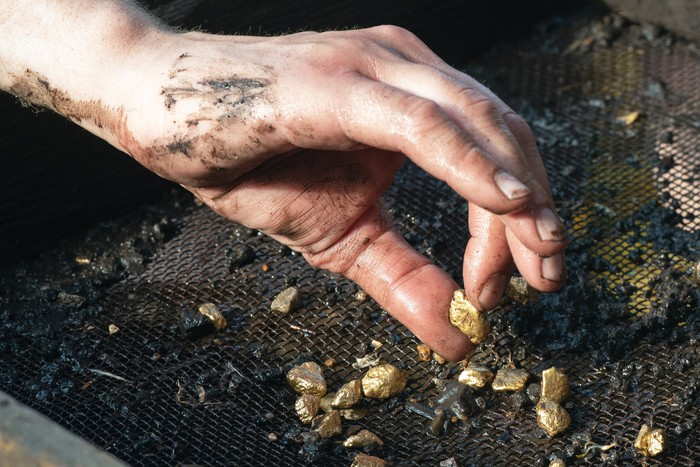 A man picks up a gold nugget from a screen.