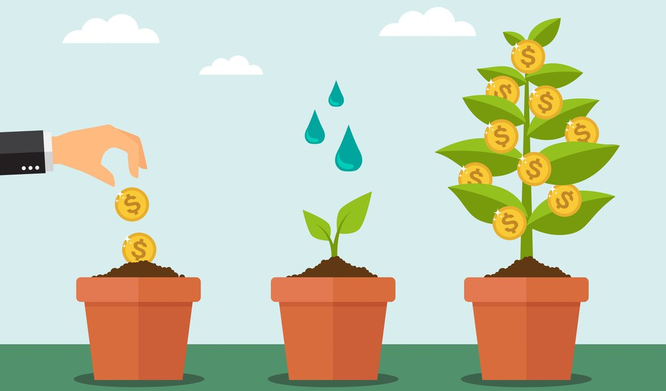 Getty - money grows plant water put money to work