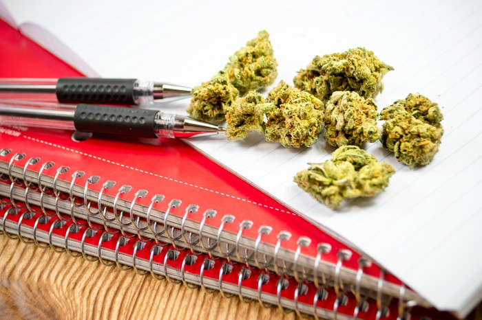 Marijuana buds atop a set of red notebooks and next to two pens.