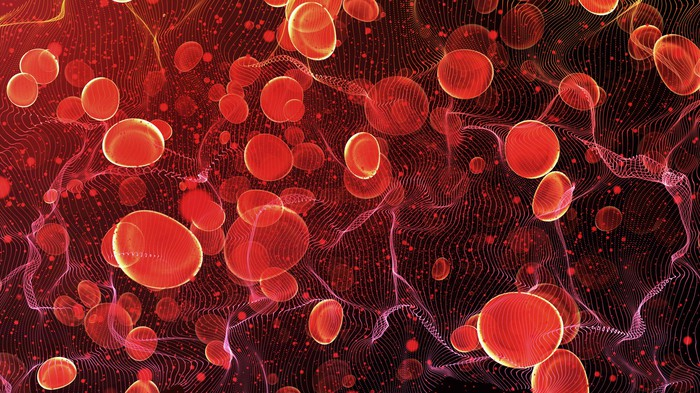 Red blood cells traveling inside an artery