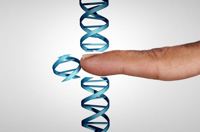A finger a DNA strand