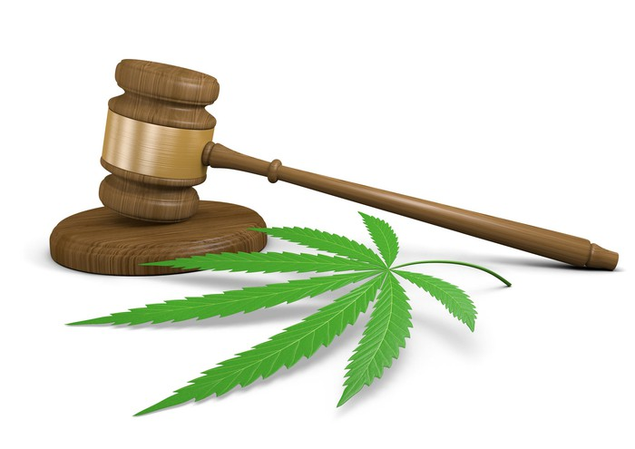 Cannabis leaf with gavel