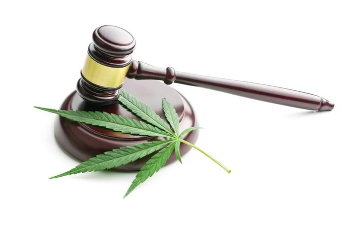 A cannabis leaf sits next to a gavel on a striking block.