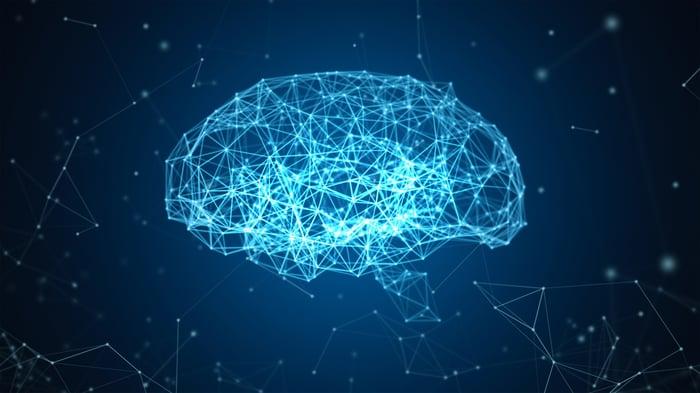A digital map of a brain.