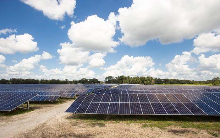 Solar panel array in a field.