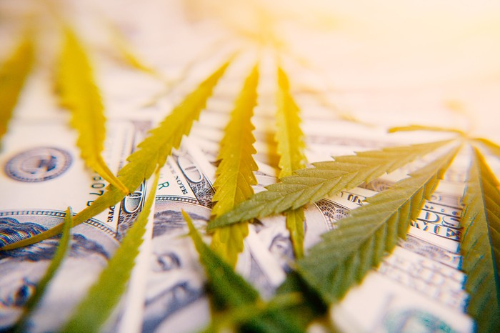 Marijuana leaves on top of one hundred dollar bills.
