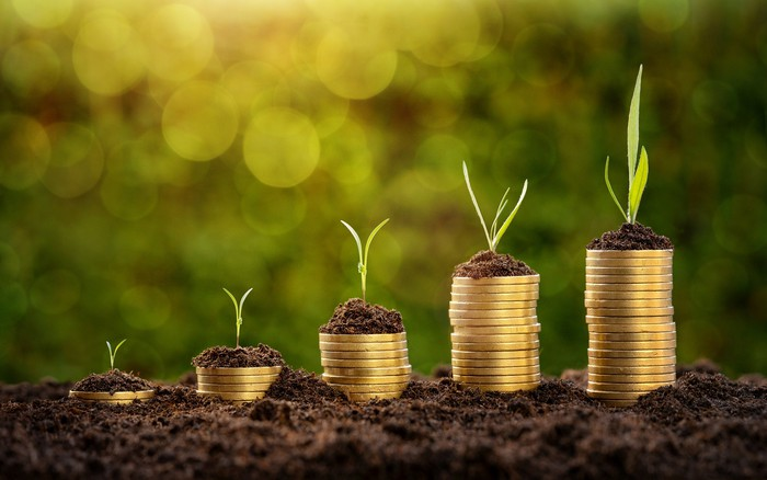 Green shoots grow out of stacks of coins.