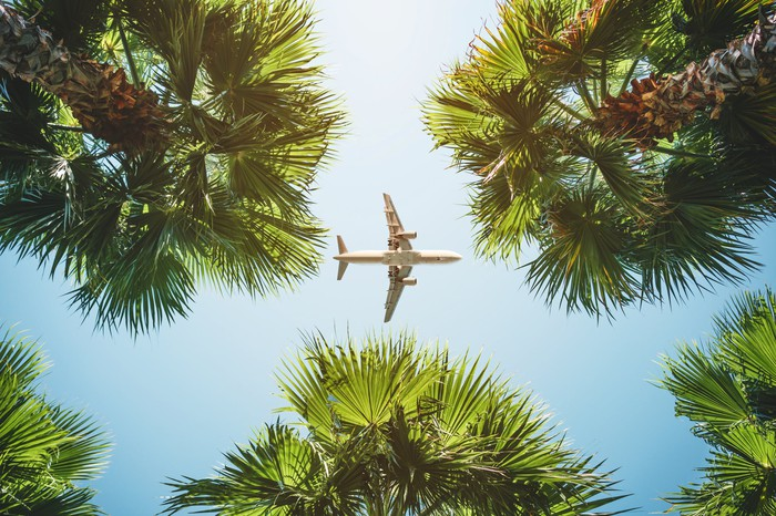 A plane flies over tropical palm trees.
