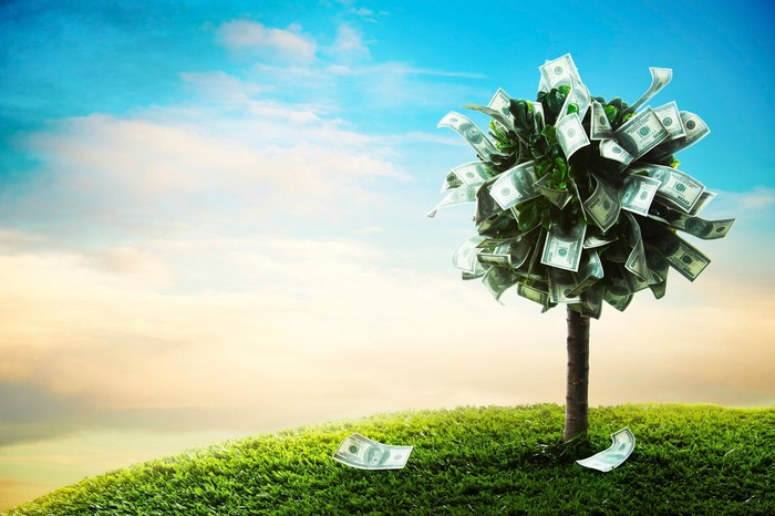 A tree at the top of the hill with leaves made of cash.