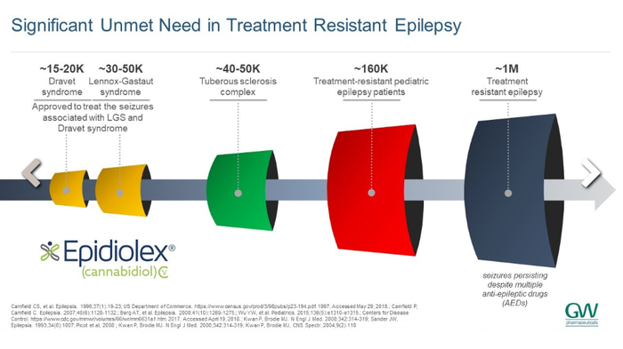 Unmet need in treatment-resistant epilepsy diagram