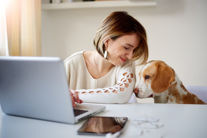Woman working at home with her dog.