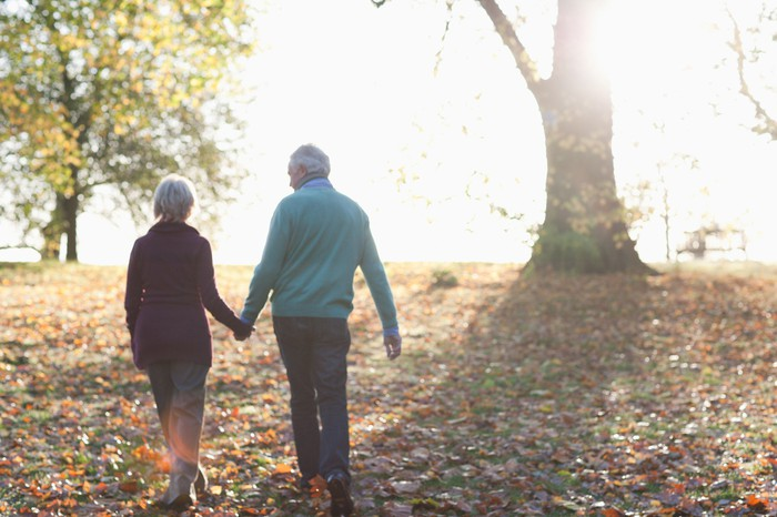 Older man and woman with their backs turned holding hands outdoors