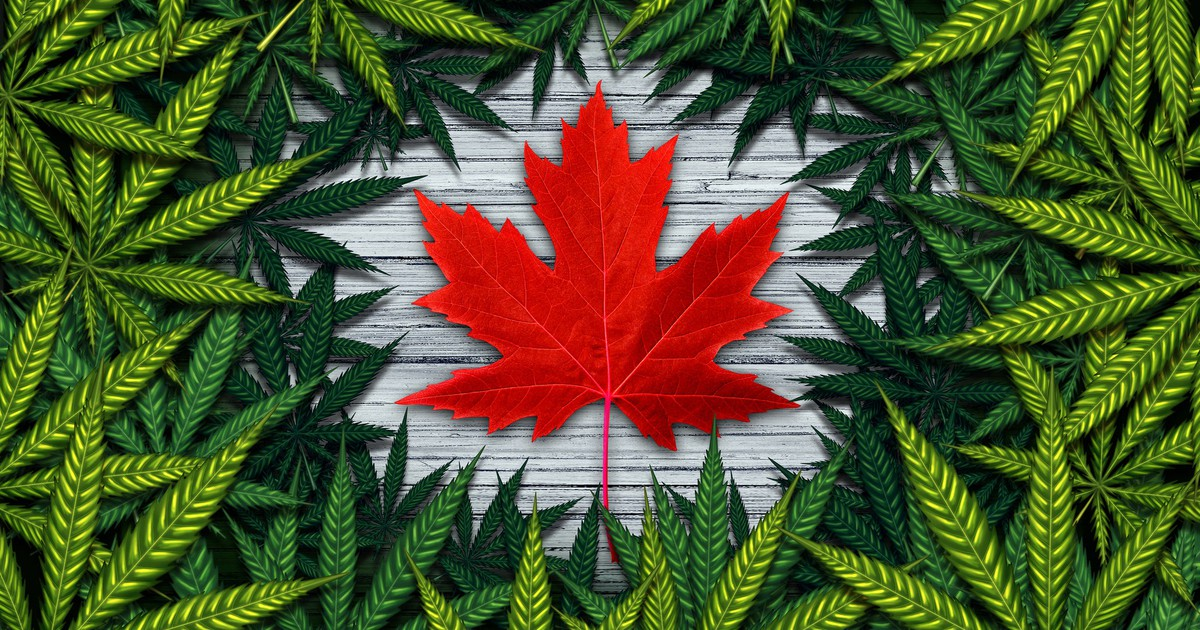 Canadian Cannabis GDP Contribution Rises by 15% in November