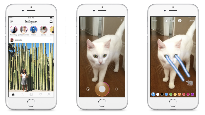 Three smartphones displaying Instagram Stories with a cat shooting lasers out of its eyes