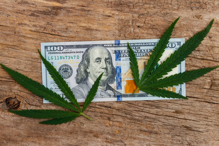 Two cannabis leaves on top of a $100 dollar bill.