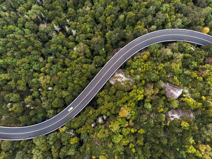 aerial view of a road winding through a forest