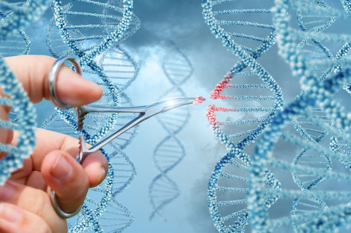 A person with scissors snipping out a piece of DNA from a DNA strand.