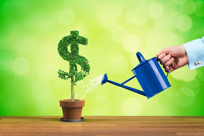 A hand is watering a plant that's growing in the shape of a dollar sign.
