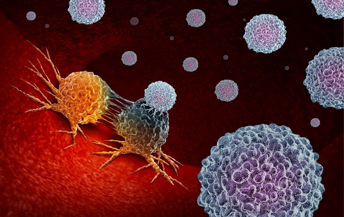 Cancer immunotherapy.