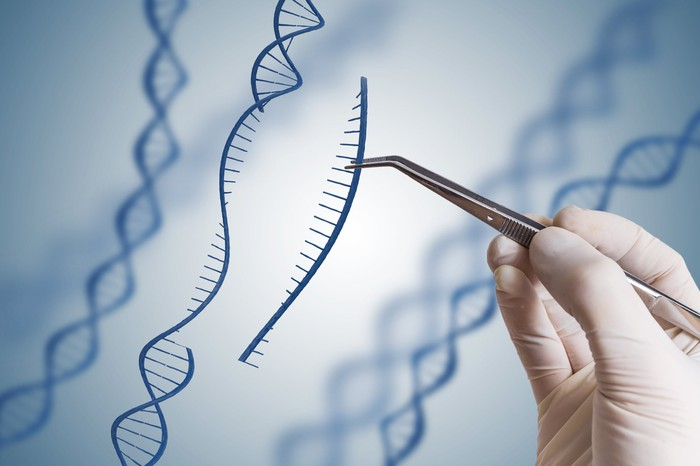 A strand of DNA getting a piece removed by a scientist.