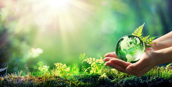 A green planet earth is held in hands in an outdoor setting.
