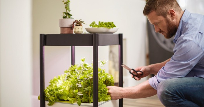 Scotts Miracle-Gro indoor growing system.