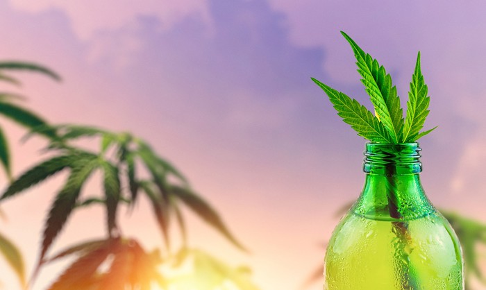 Cannabis leaves in a beverage bottle.