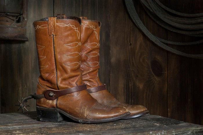 A pair of cowboy boots in a dark wood space