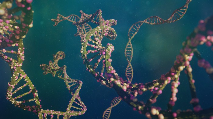 Strands of DNA carrying genetic instructions are shown against a green background.