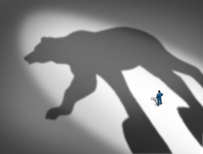 Giant shadow of a bear with a tiny man staring at the shadow
