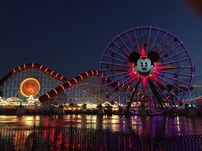 A roller coaster and a Ferris wheel with Mickey Mouse lit up at light.