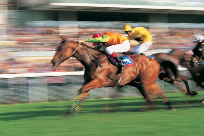 A picture of a horse race in motion.